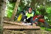 Motorsägenkette beim Einsatz im Wald
