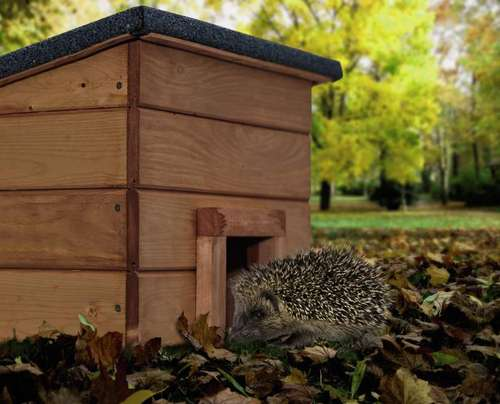 im garten f r die igel ein winterquartier schaffen lagerhaus. Black Bedroom Furniture Sets. Home Design Ideas