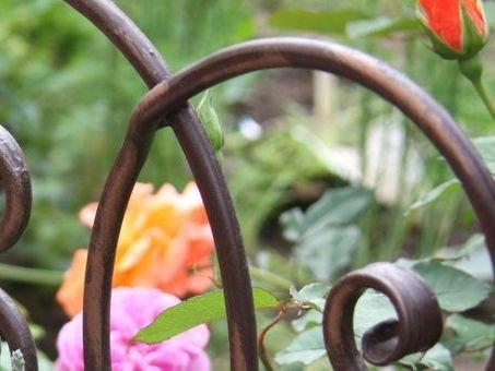 pflanzenschutzmittel in haus und garten lagerhaus. Black Bedroom Furniture Sets. Home Design Ideas