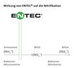 Wirkung von Entec auf die Nitrifikation