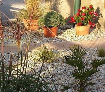 f r jede pflanze findet sich ein passender topf unser lagerhaus whg. Black Bedroom Furniture Sets. Home Design Ideas