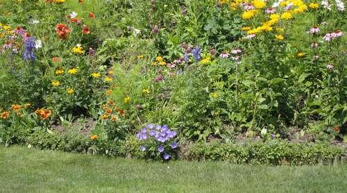 Wie Man Steile Hange Und Boschungen Bepflanzt Lagerhaus