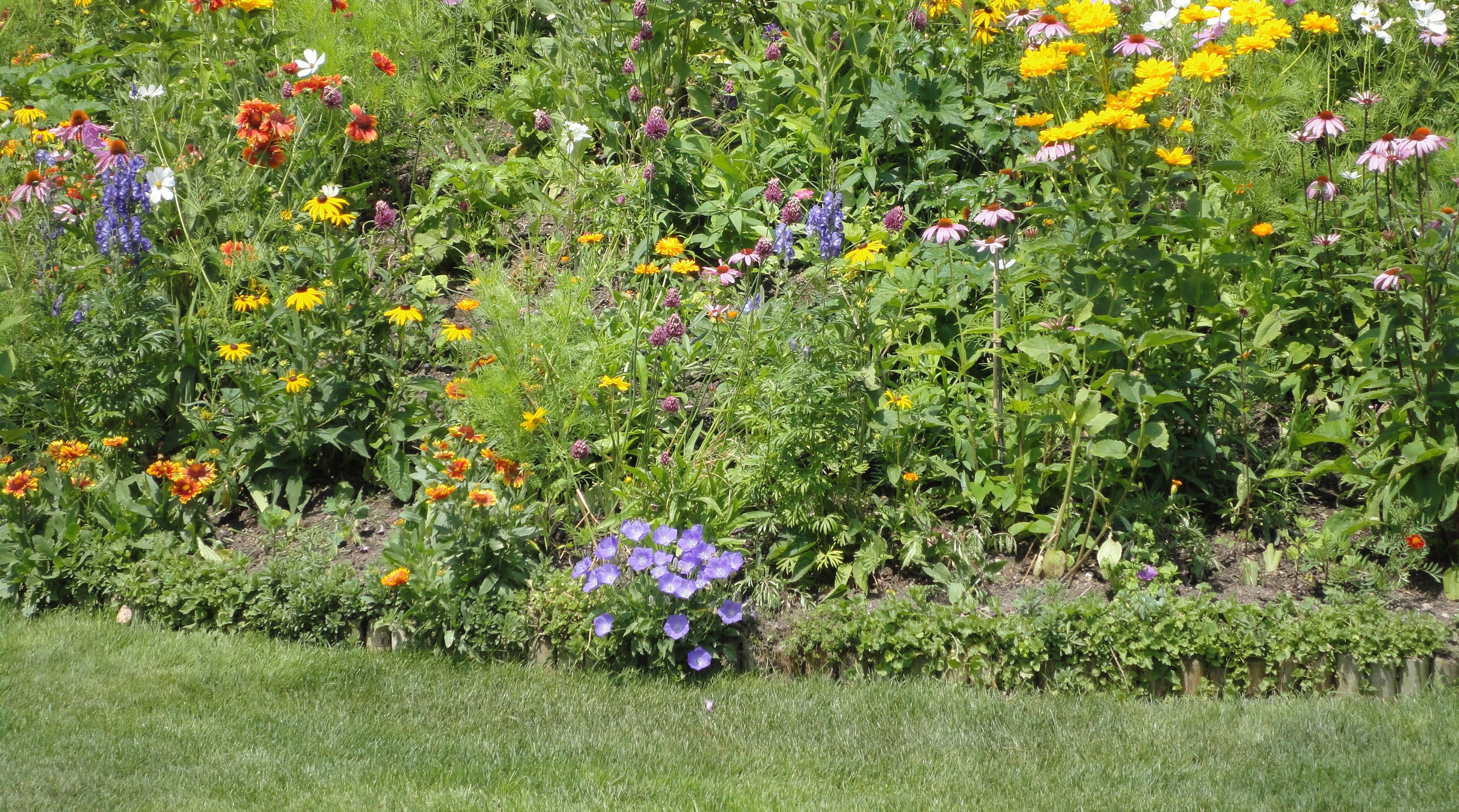 Terrassenhang Mit Sommerblumen Terrassenhang Mit Sommerblumen Terrassenhang  Mit Sommerblumen [1427293711897376]