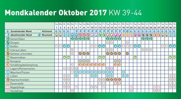 mondkalender 2017 oktober lagerhaus. Black Bedroom Furniture Sets. Home Design Ideas