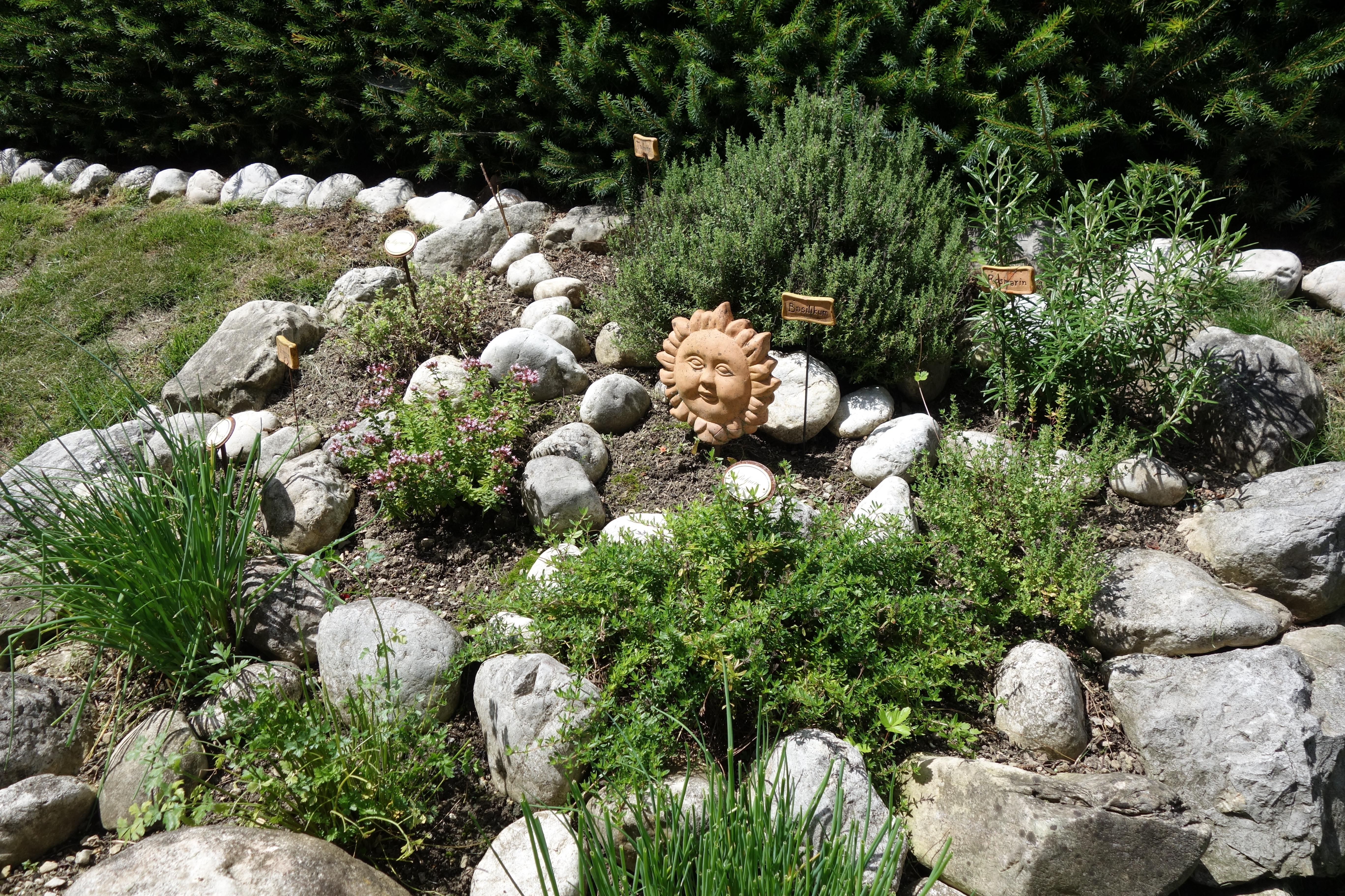 Pflanzen fur steingarten immergrun malerei wohndesign - Winterharte pflanzen fur steingarten ...