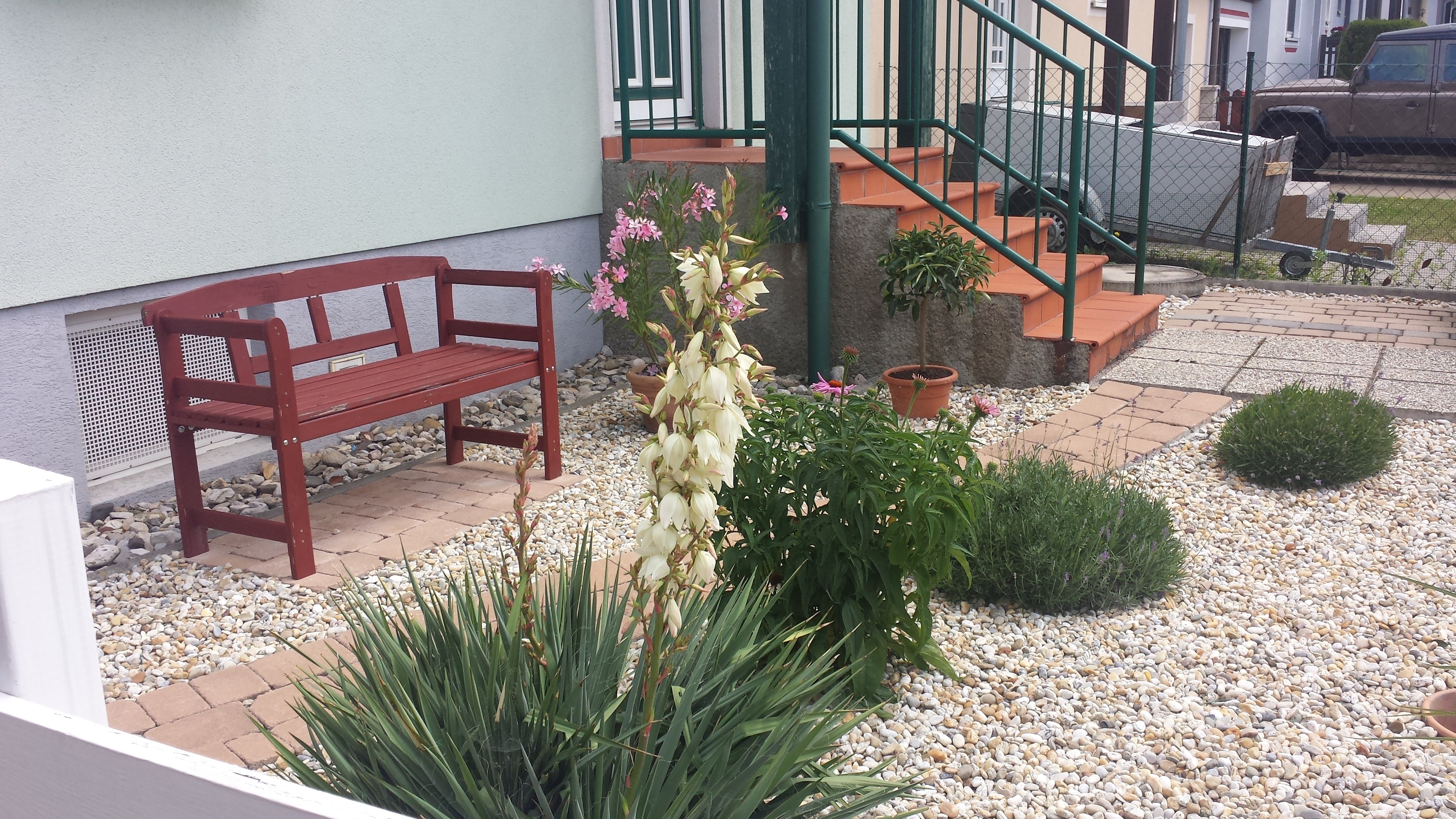 Schon Besonders Gut Für Einen Kiesgarten Eignen Sich Folgende Pflanzen