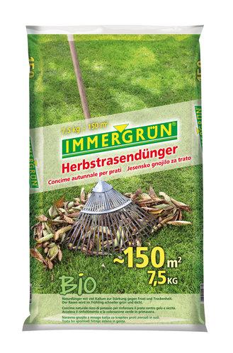 Lieblings Die wichtigste Rasendüngung ist die im Spätherbst | Immergrün #ZO_34